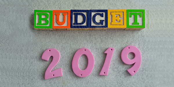 Planning family budget